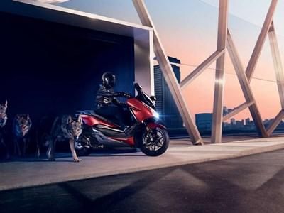 Honda Motorcycles- NSS125 FORZA Offers