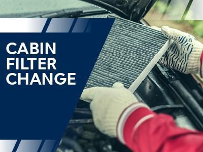 Dacia Pollen Cabin Change