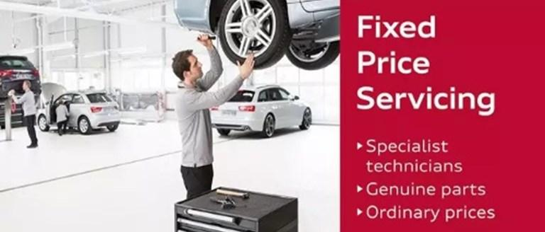 Fixed Price Audi Servicing