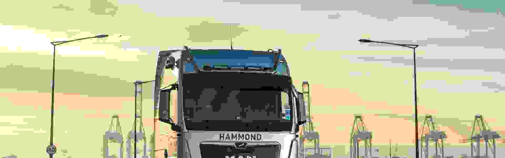 There is a powerful Lion in the ranks at Hammond Transport