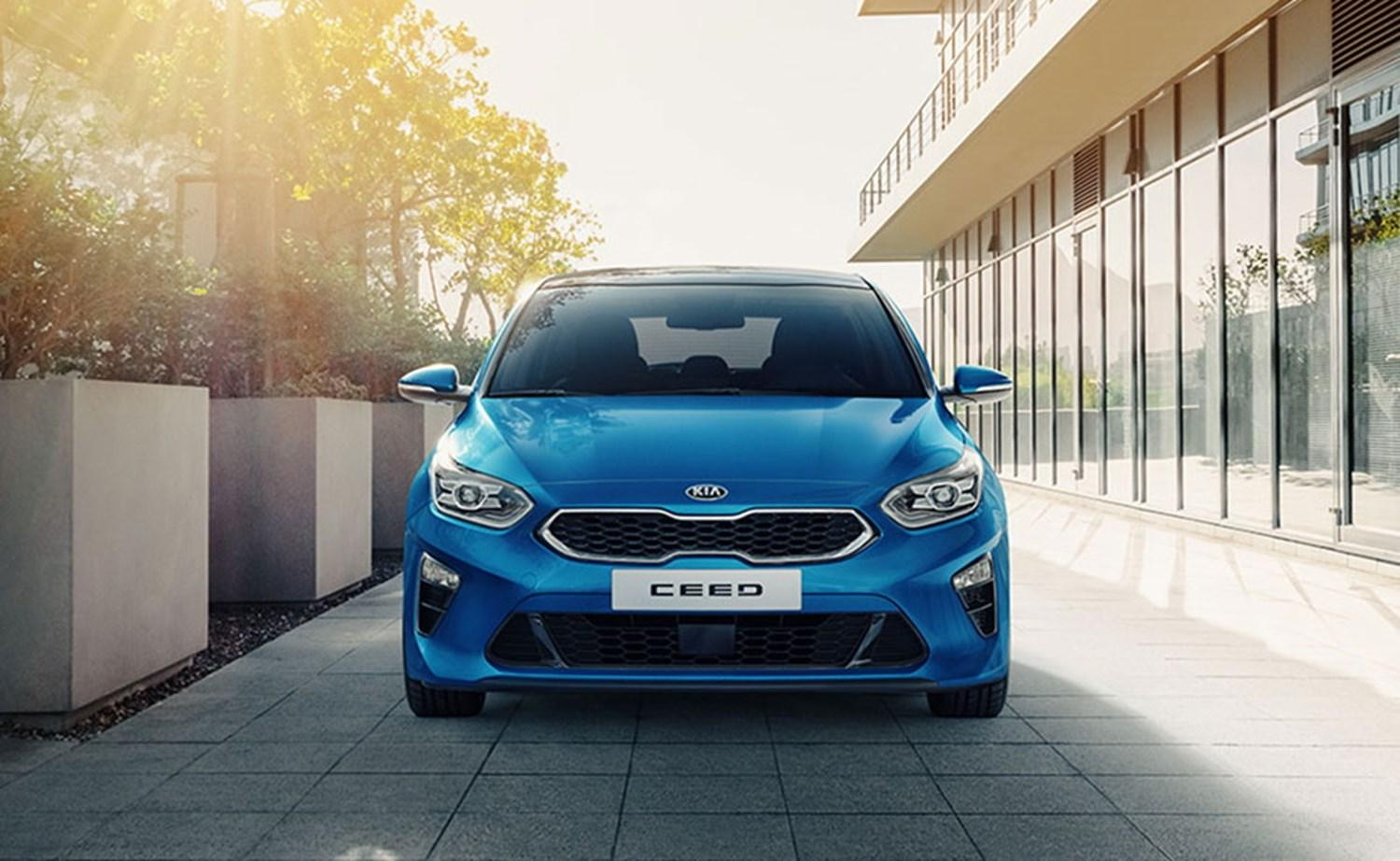 Blue Ceed front on