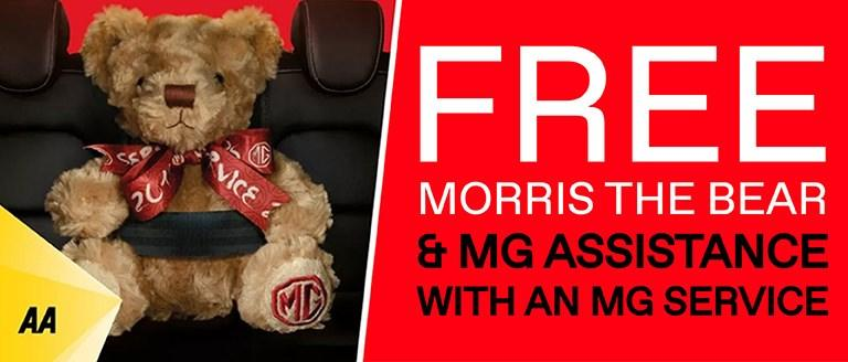 FREE MG Assistance With MG Servicing
