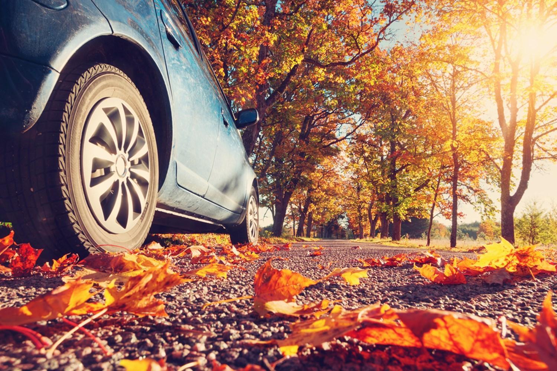 Autumn Car Care